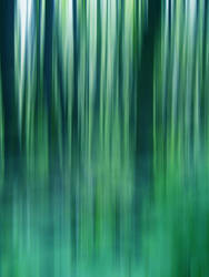 Abstract spring colors II by FilipR8