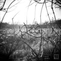 Cage - Klec by FilipR8