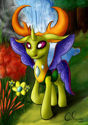 King Thorax by Calenita