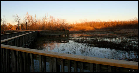 Path over Water by b3stbuddy