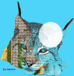 Abstract Lynx by douira