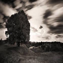 Baggins End by SteOS