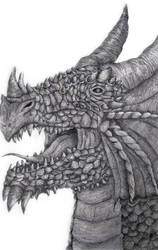Dragon Tonal  by CosmicCatastrophe