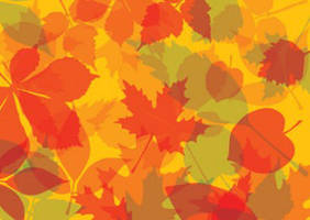 Autumn leaves background by superawesomevectors