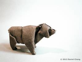 Brown Bear by mitanei