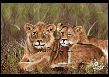 Two Lions by MEJ0NY