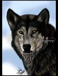 Wolf by MEJ0NY
