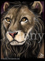 Lion -Zima- by MEJ0NY
