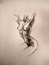 figure drawing of the female body by randyjackson20