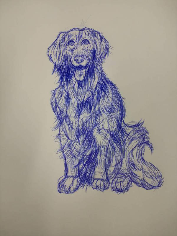 dog by randyjackson20
