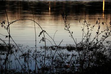 Peace in Darkness by blackstar707