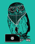 Owl by recycledwax