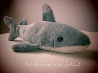 Sharky Plush by SharkSmirk