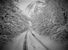 Cold Touching by Ekatoka