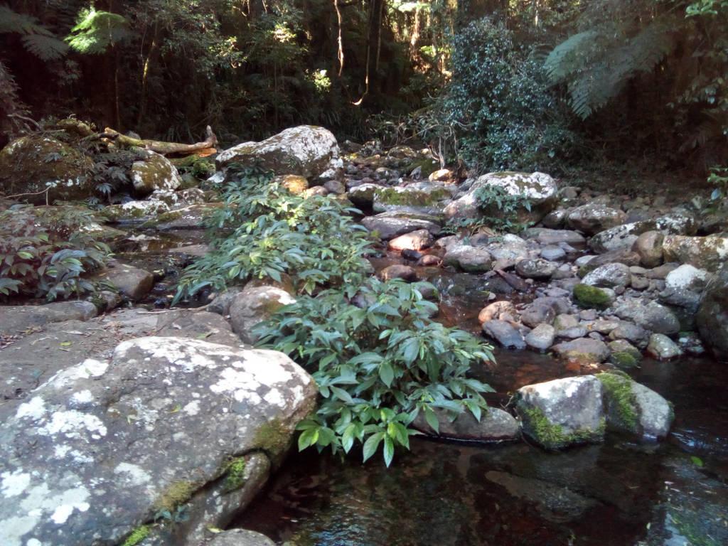 Creek 2 by TobyOneKenobiTK