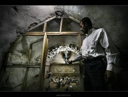 Pigeoner Omer by oscarsnapshotter