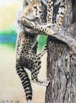 Climbing Cheetah Cubs by The-Long-Feline