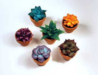 Mini Felt Succulents by MadeleiZoo