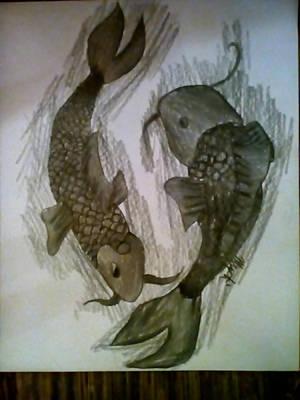 Koi Fish (bad photo) by XxkickmewhenimdownxX