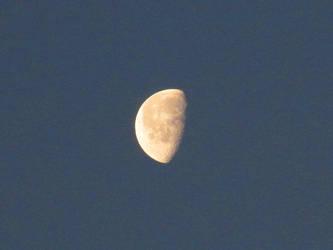 honey-tinted moon by ToastOfTheBurnt527