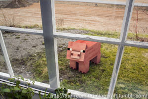 Minecraft Pig IRL by Weed-Lion