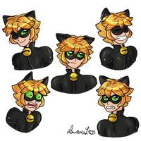 Chat Noir - Facial Expressions by Laurence-L