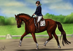 not placed -Mental Illness Event Dressage - Sorcha by RQsf