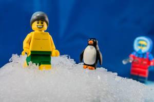 8 Janvier - Meme pas froid ! (3/26) by InterludePhoto