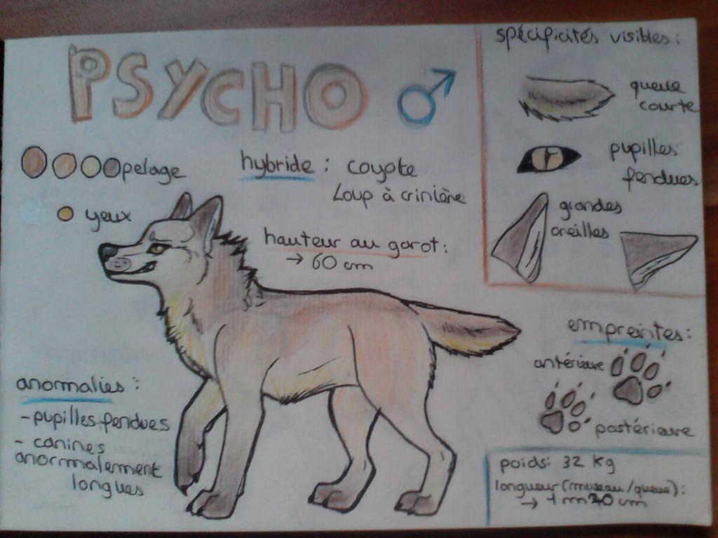 OC : Psycho by BlastOfWinter