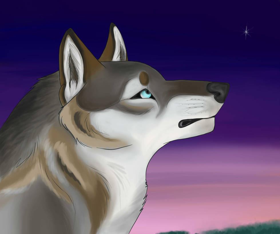 the last star of the sky by BlastOfWinter