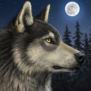 Winter-Alpha-Wolf's Profile Picture