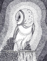 Barn-owl by GalaCat