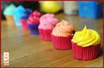 Rainbow Cupackes Paint Cakes1 by Paintcakes