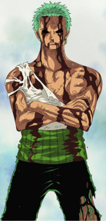 Zoro After Taking Luffy's Pain by YellowFlash1234