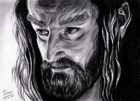 Richard Armitage, Thorin Oakenshield by jos2507
