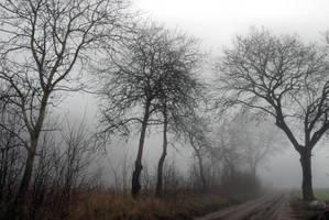 gloomy way by Wilithin