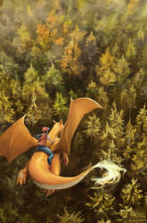Flying with Charizard by mcgmark