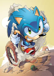 Sonic 216 cover by Yardley