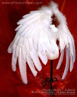 GABRIEL v4 Protection BJD Wing by eProductSales