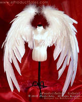 GABRIEL v5 70cm DOLL WINGS by eProductSales