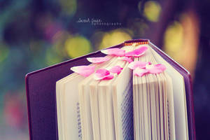 .:: Beauty of Books ::. by Whimsical-Dreams