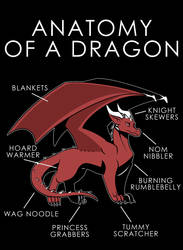 Anatomy of a Dragon by artwork-tee