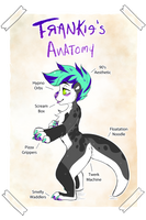 Anatomy of Frankie by artwork-tee