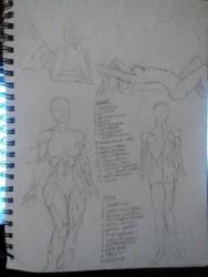 Anatomy 3 by gotthclaudia