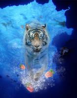 Strawberry tiger splash by Lambda2441
