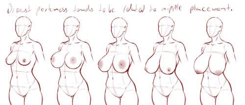 Breast drawing: perkiness by Ecchi-Senshi