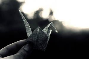 Fly crane, fly by Soyismyhomeboy