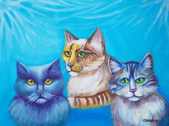 Crazy cats by irisv-c