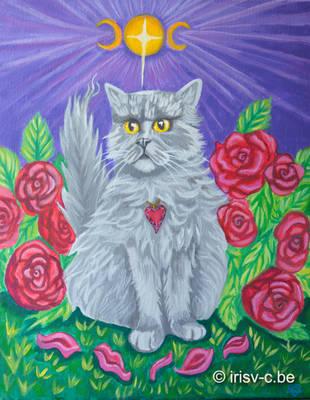 Twilight cat by irisv-c