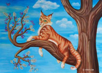 Maine coon in blossom tree by irisv-c